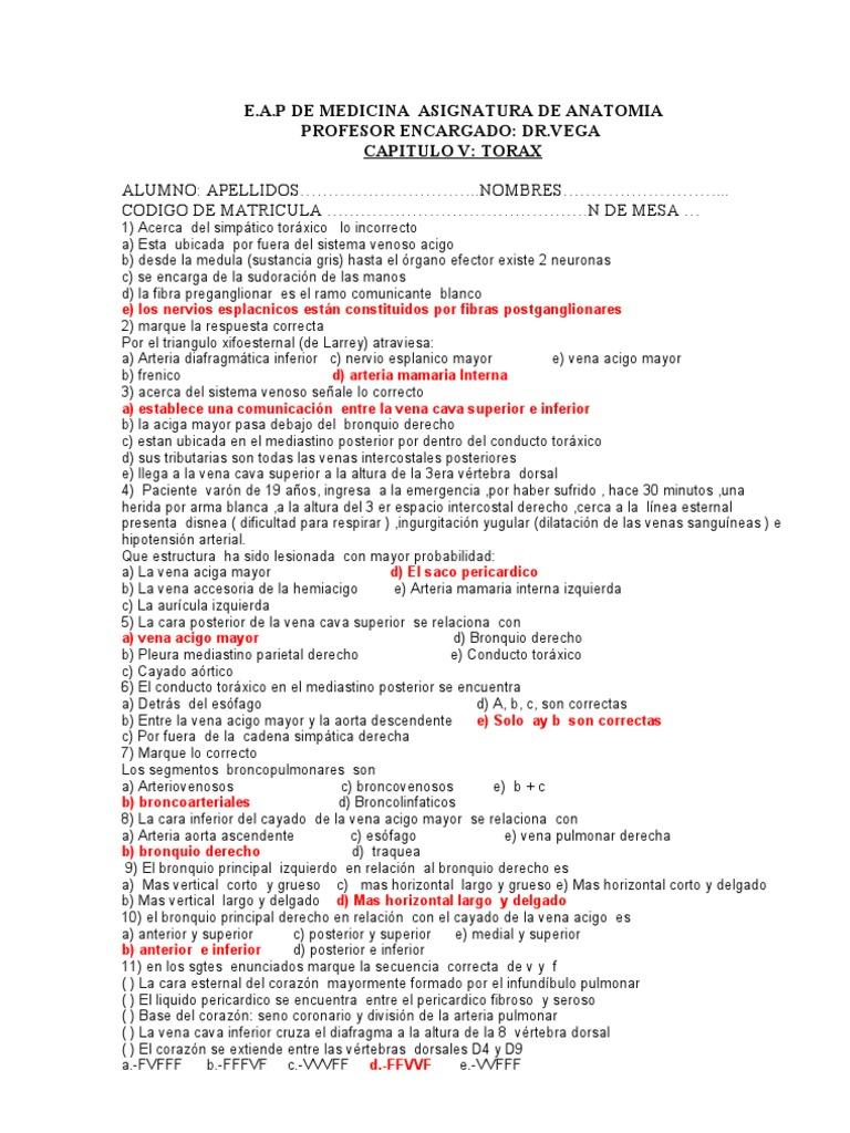 Moderno Preguntas De La Prueba Anatomía Imagen - Imágenes de ...