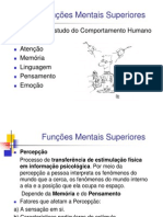 funcoes_mentais_superiores