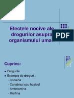 Efectele Nocive Ale Drogurilor Asupra Organismului Uman