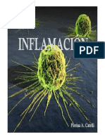 Clase_1-09-09_Inflamacion