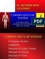 02 CDP MA Cardiovascular