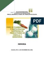 Cebolla y Zanahoria Guanajuato