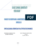 Proiect Teisanu Iulian Clasa a-XII-A a CORECTAT (1)
