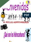 Presentación Hidrocarburo VOCACION 2013