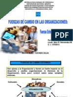 fuerzasdecambioexternaseinternas-110804100813-phpapp01