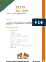 Teoria de Las Organizaciones - Modulo6