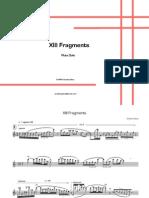 XIII Fragments