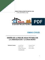 Informe - Red de Agua Potable la gran mora.docx