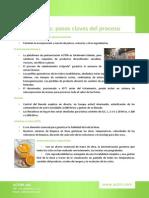 El Proceso Del Puré de Frutas
