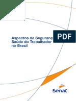 Aspectos Da Segurança e Saúde Do Trabalhador n Brasil