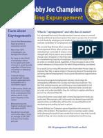 Understanding Expungement
