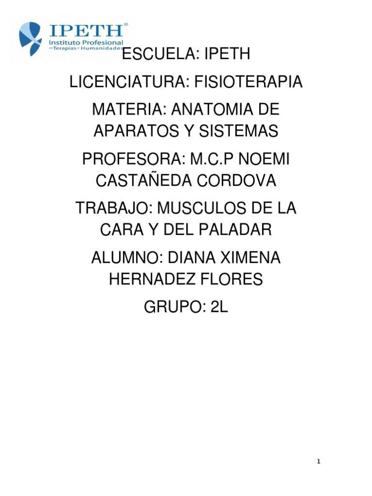 Musculos de La Boca Anatomia (2)
