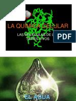 La Quimica Celular