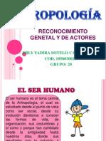 Reconocimiento Genetal y de Actores