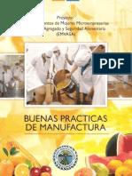 BPM Buenas Practicas de Manufactura - HIGIENE Y MANIPULACION DE ALIMENTOS