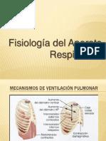 Fisiologia Del Aparato Respiratoriooooo