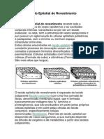 Tecido Epitelial de Revestimento.docx