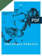 Amazonia Publica Pt