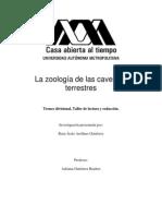 La Zoologia de Las Cavernas Terrestres
