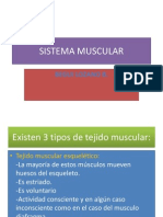 sistemamuscular-140218225905-phpapp02