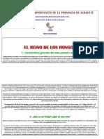 Las 100 Setas Más Importantes de La Provincia de Albacete