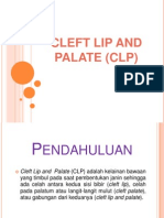 Cleft Lip and Palate (Clp)