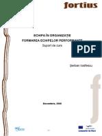 echipa in organizatii.pdf