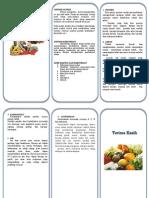 Leaflet Nutrisi Pada Pasien Kemo