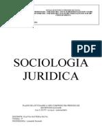 Trabalho Sociologia Juridica