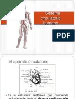 8-1 El Aparato Circulatorio-generalidades