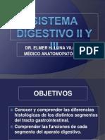Digestivo II y III