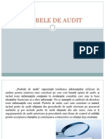 Referat Audit