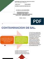 MODESTO DESEMPEÑO 1.pdf