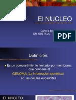 Tema 7 Nucleo