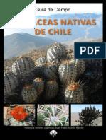 cactaceas_chilenas_2013