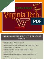 pan-african belize vtsoc 2014 presentation