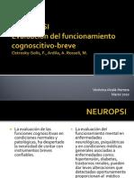 Evaluanción neuropsicológica