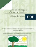 ciencias-8ano-3teste-121111101627-phpapp01.pptx
