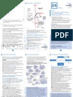 Z4 Soft Systems Methodology