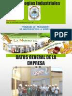 PROCESO DE LA MORINA.pptx