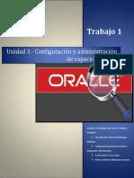 Conceptos Basicos Sobre Oracle DataBase 11g