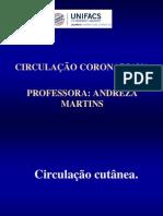 CIRCULAÇÕES ESPECIAIS ANDREZA