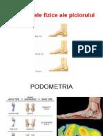 Deficienţele Fizice Ale Piciorului - Seminar 7 (1)