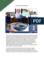 Contaminacion Ambiental Trabajo