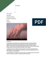 La contaminacion del medio ambiente.docx