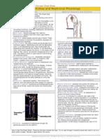 HPH_CS17_KidneyAndNephronalPhysiology