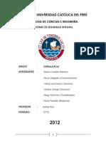 Trabajo Ley Nº29783 -Informe Final