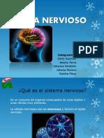 Sistema Nervioso Exposicion