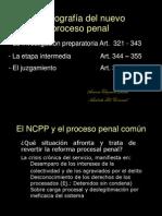 Radiografía Del Nuevo PROCESO PENAL