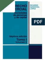Sandoval López - Sociedad de Personas y Capital Tomo I Vol 2